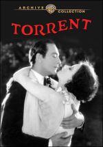 Affiche Le Torrent