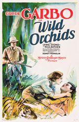 Affiche Wild Orchids