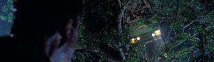 Cover La crème des films de véhicules crashés dans des arbres