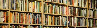 Cover Les meilleurs romans russes