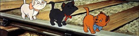 Cover Top des films où le personnage principal est un chat