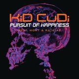 Pochette Pursuit of Happiness (instrumental remake) (Single)
