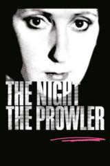 Affiche La nuit, un rôdeur