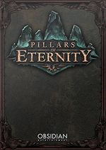 Jaquette Pillars of Eternity
