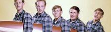 Cover Les meilleurs albums des Beach Boys