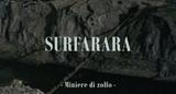 Affiche Surfarara