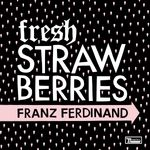 Pochette Fresh Strawberries (Single)