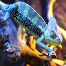Pochette Da Bourgeoisie (Single)
