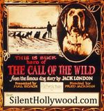 Affiche Call of the Wild