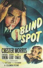 Affiche Blind Spot