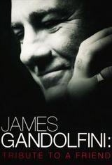 Affiche James Gandolfini : Tribute to a Friend
