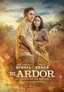 Affiche Ardor