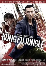 Affiche Kung Fu Jungle