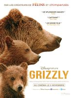 Affiche Grizzly
