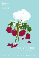 Affiche Le météore