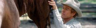 Cover Les meilleurs films sur les chevaux