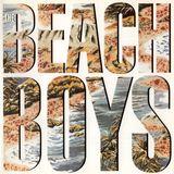 Pochette The Beach Boys