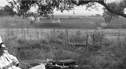 Cover Les meilleurs films de Francis Ford Coppola