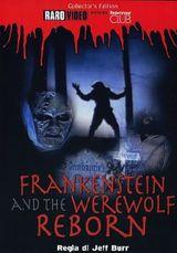 Affiche Frankenstein et le loup garou