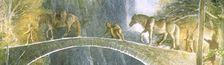 Cover A la recherche de fantasy (liste participative).