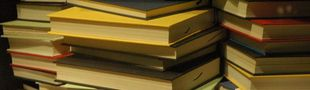 Cover Les meilleurs romans japonais