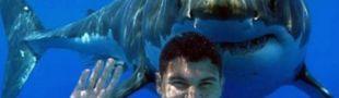 Cover Requins tueurs, la rigueur scientifique au service du cinéma (ou de la TNT)