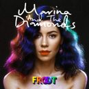 Pochette FROOT