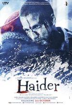 Affiche Haider