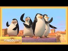 Video de Les Pingouins de Madagascar