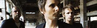 Cover Les meilleurs albums de Muse