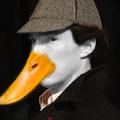 Avatar Ducktective