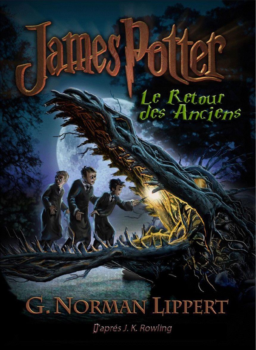 James Potter Et Le Retour Des Anciens Le Fils De Harry