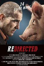 Affiche Redirected