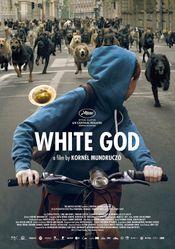 Affiche White God