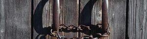 Fen tre sur cour film 1954 senscritique for Huis clos fenetre