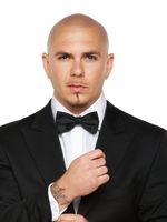 Photo Pitbull