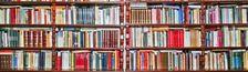 Cover Livres lus en 2015 (avec commentaires)