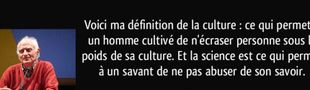 Cover Le Monde merveilleux de Youtube : Rubrique Culture