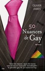 Couverture 50 nuances de Gay