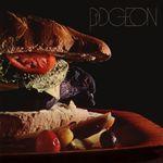 Pochette Pidgeon