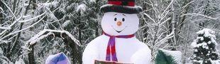 Cover Les meilleurs films où il neige