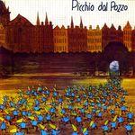 Pochette Picchio dal pozzo