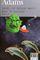 Couverture Salut, et encore merci pour le poisson - H2G2, tome 4