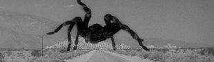 Cover Top 20 films de monstres