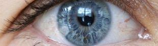 Cover Fracture de l'oeil