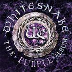 Pochette The Purple Album