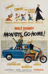 Affiche Rentrez chez vous, les singes !