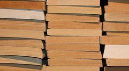 Cover Les livres qui sont des plaisirs coupables