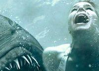 Cover Les_meilleurs_films_avec_des_requins
