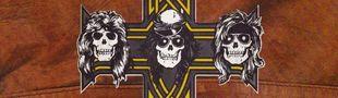 Cover Les meilleurs titres des Guns N' Roses
